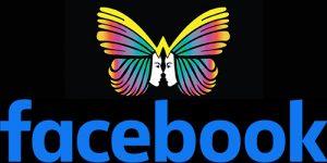 facebook seguici wondercolor